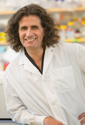 Michele CarboneMichele Carbone, MD, PhD